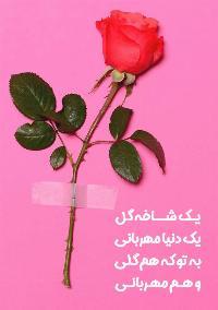 تقدیم شاخه گل